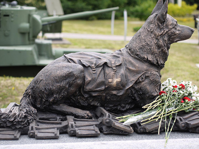21 июня 2013 г. в Москве, на Поклонной горе, поставлен памятник «Фронтовой Собаке»